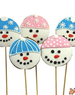Mr Frosty Cookie Pops