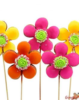 Razzle Flower Cookie Pops