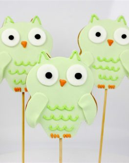 Wide-eyed Owl Cookie Pops