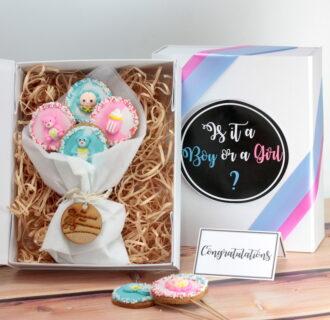 Cookie Pops Budget Gender Reveal web
